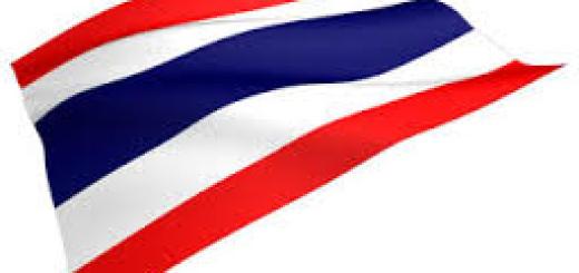 タイについて