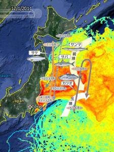 福島 汚染マップ