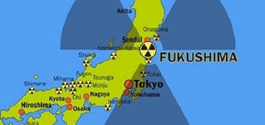 サーファー 福島 放射能