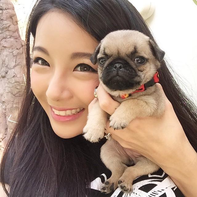 犬とかわいい子