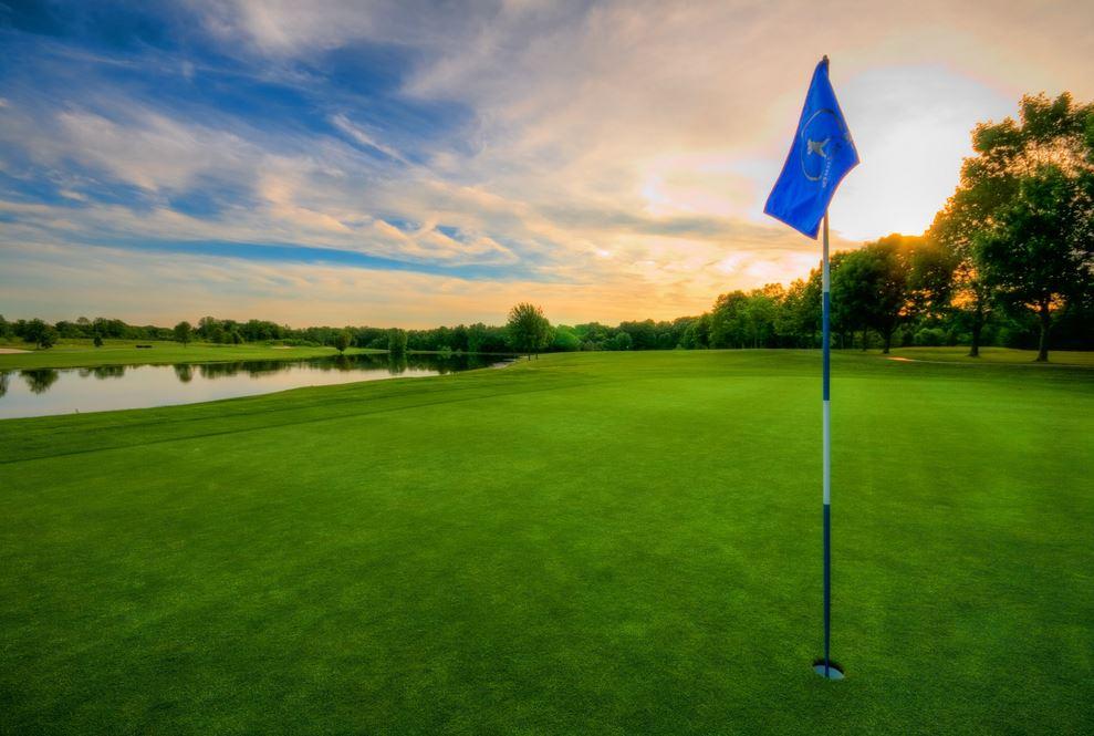 ゴルフの芝生