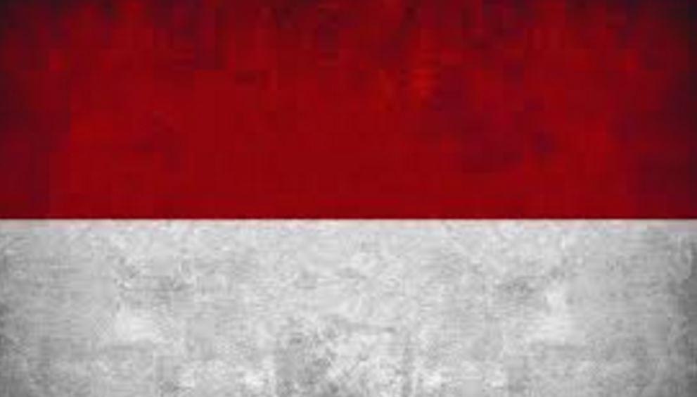 インドネシア大好き