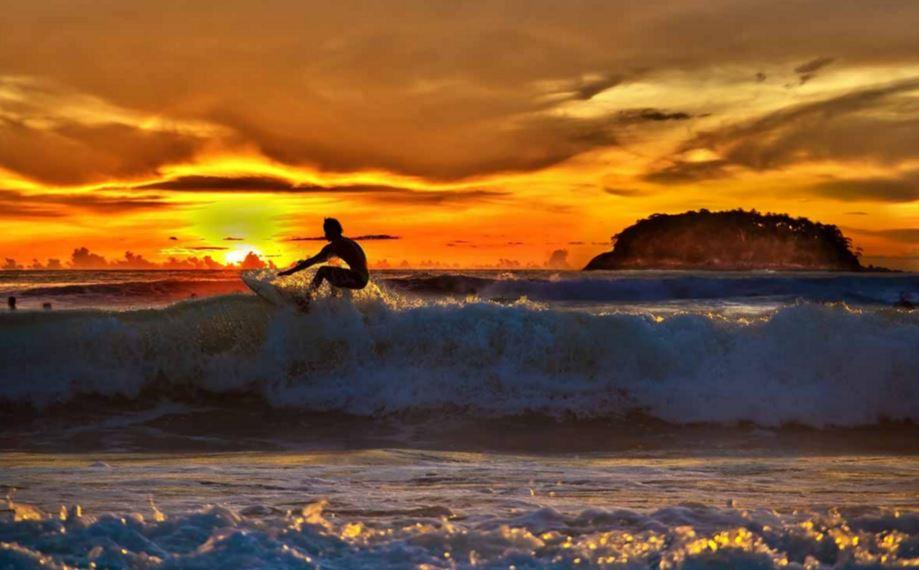 サーフィンの季節