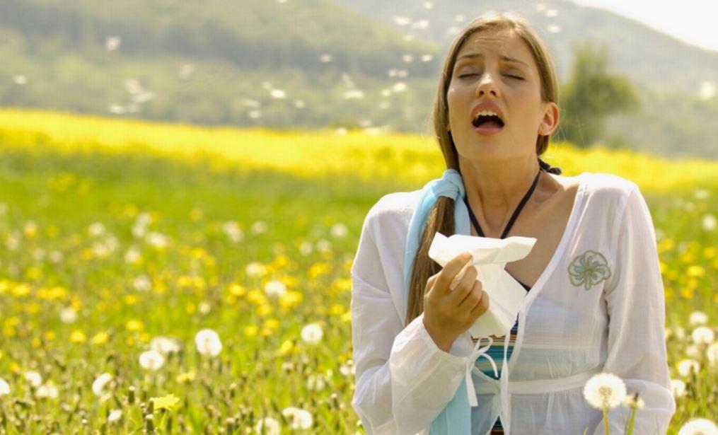 タイに花粉症はない