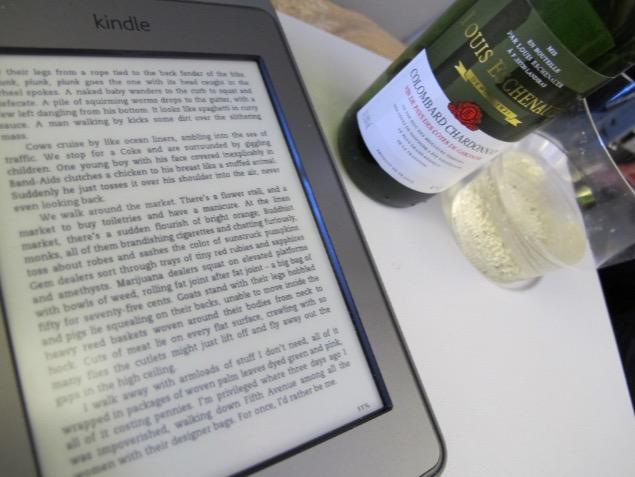 KindleAirplane