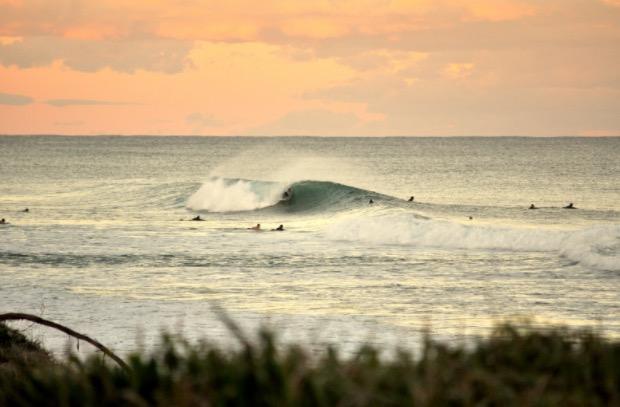ausie-surfing