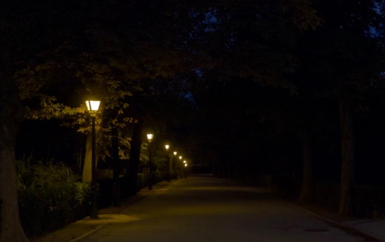 nightpark