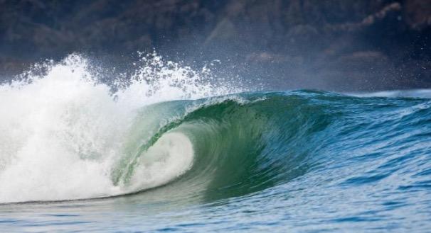 Shizuoka-Wave